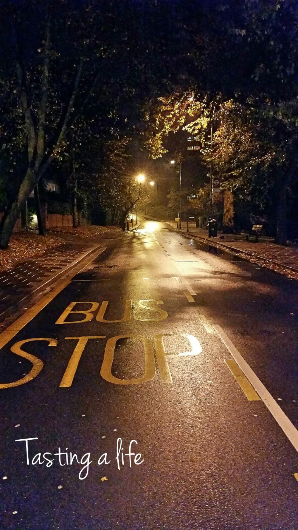 Autumnnight_Southfields_2014