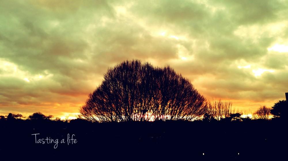 AutumnSunset_Southfiels_2014