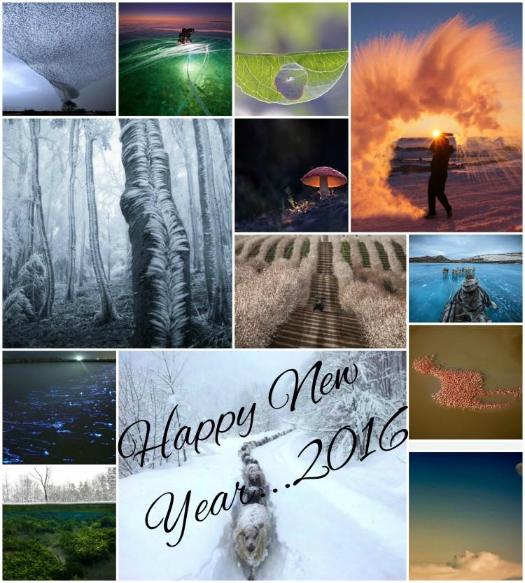 Collage2016nye_card