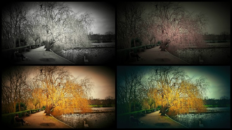 Seasons vs time